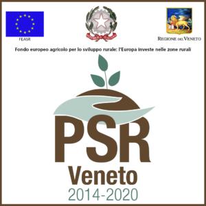 PSR Veneto 2020